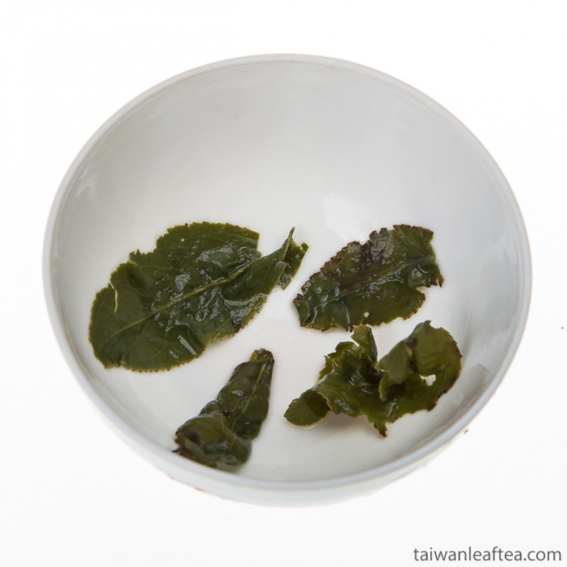 Rare Organic Dayuling Oolong Tea from Alpine Plantation (大禹嶺) Image 2