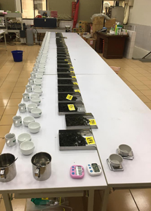 Tea Competitions in Taiwan
